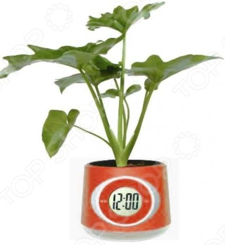 Цветочный горшок с часами FS-2612. В ассортименте