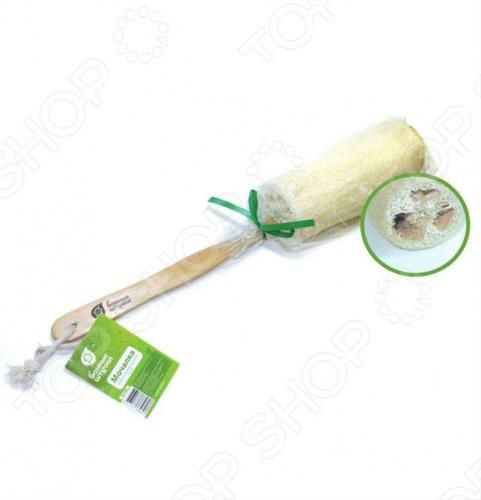 Мочалка из люфы Банные штучки на деревянной ручке мочалка из люфы банные штучки овальная 40056