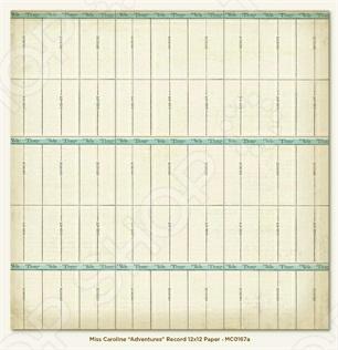 фото Бумага для скрапбукинга двусторонняя Morn Sun Record, купить, цена