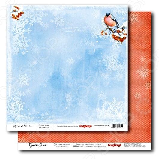 фото Бумага для скрапбукинга двусторонняя ScrapBerrys Зимняя птичка, купить, цена