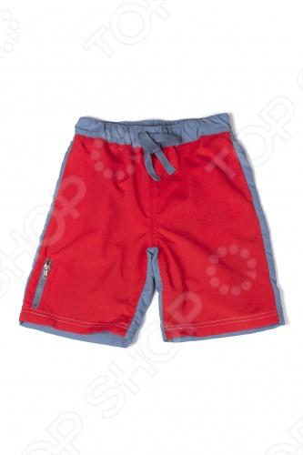 Шорты для мальчиков Шорты детские для мальчика Appaman Colorblock Swim Trunks. Цвет: красный