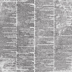 фото Бумага для скрапбукинга Bazzill Basics «Словарь», купить, цена