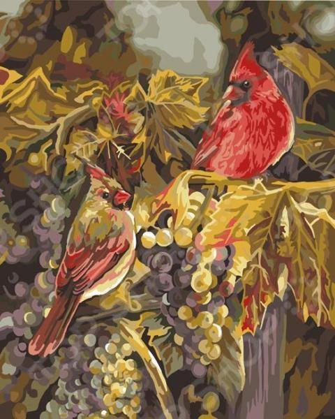 Набор для рисования по номерам PLAID «Две птицы в винограде»Наборы для рисования по номерам<br>Набор для рисования по номерам PLAID Две птицы в винограде подарит возможность любому человеку без художественного образования почувствовать себя профессиональным живописцем! Рисование по номерам это новый вид увлекательного изобразительного хобби. Нанеся краски на холст с готовым контуром рисунка и номерами необходимой краски, ориентируясь на контрольный лист, вы сможете создать настоящий шедевр своими руками. Набор будет одинаково интересен и детям, и взрослым. Вы можете преподнести его в качестве подарка или использовать, чтобы украсить стены своей комнаты или гостиной. В наборе: качественные акриловые краски, фактурный картон с нанесенным контуром рисунка, кисть, инструкция. При рисовании картины не требуется смешивать краски. Размер холста: 41х51 см. Использованная в данном наборе краска на основе акриловой кислоты очень популярна, универсальна и удобна в обращении. Она быстро высыхает, не выгорает на солнце и не тускнеет со временем. После высыхания такая краска образует эластичную пленку, которая не крошится, не отслаивается и не трескается. Высохшая акриловая краска устойчива к перепадам температур и изменению влажности.<br>