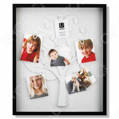 Рамка для фотографий Umbra Family Tree это оригинально выполненная фоторамка в виде дерева, в которую можно поместить фото всех членов семьи. У каждого человека есть особые воспоминания запечатленные в фотографиях, показывающие самые интересные промежутки жизни и которые заслуживают оправы. Идеально для декорирования стены в любой комнате, прихожей или гостиной.