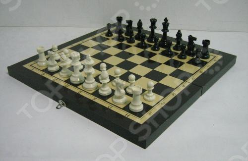 Игра 3 в 1 Toy Gift THF2202B отличный занимательный набор для всей семьи. Теперь вы сможете играть в шахматы, шашки или нарды в любом удобном для вас месте.
