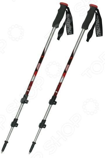 Палки треккинговые телескопические Masters Yukon Pro