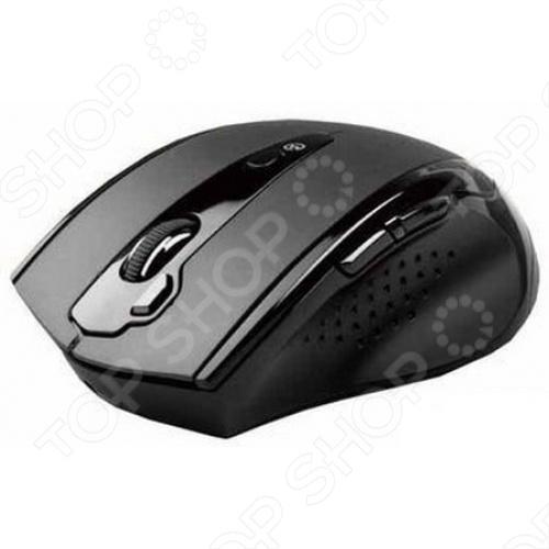 Мышь A4Tech G10-810F Black USB цена и фото