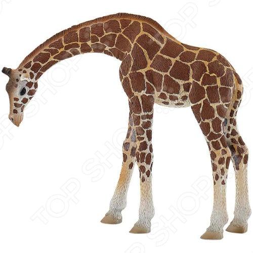 Фигурка-игрушка Bullyland Жираф игровые фигурки papo игровая реалистичная фигурка жираф