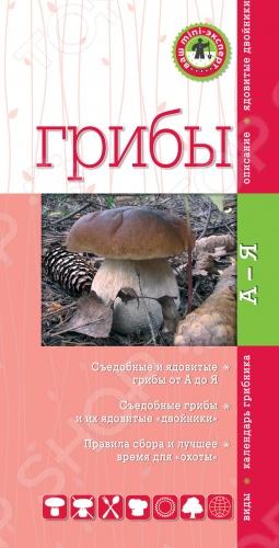 Грибы. Мини-экспертСбор грибов и ягод<br>Данное издание позволит вам быстро и уверенно определять съедобные грибы и безошибочно отличать отличать их от ядовитых двойников. Краткие, но емкие описания в сопровождении фотографий, указывают на наиболее значимые и характерные признаки каждого гриба, представляющего интерес для сбора.<br>
