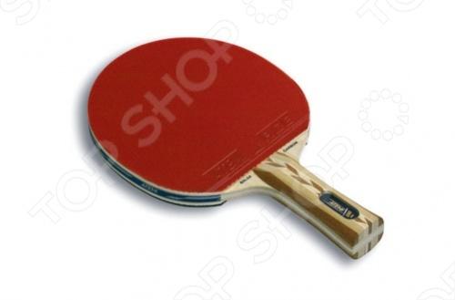 Ракетка для настольного тенниса ATEMI Pro 5000 CV Ракетка для настольного тенниса Atemi Pro 5000 CV /