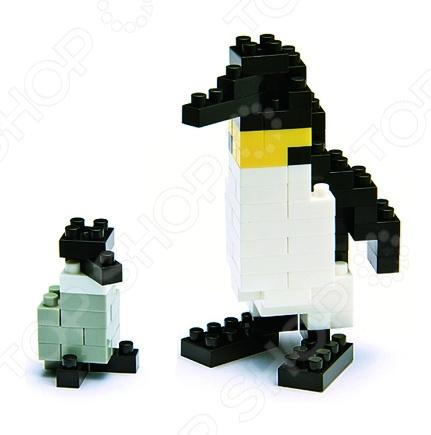 Мини-конструктор Nanoblock NBC_001 «Императорский пингвин» конструктор коала nanoblock