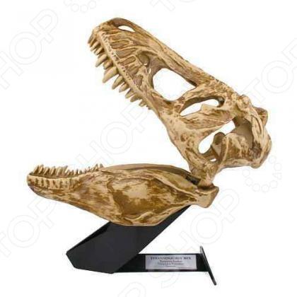 Ночник Uncle Milton «Череп тиранозавра»