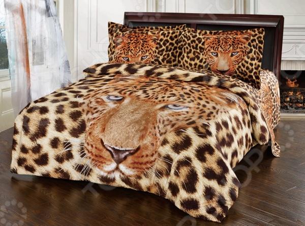 Комплект постельного белья Softline 10077. ЕвроЕвро<br>Комплект постельного белья Softline 10077 это незаменимый элемент вашей спальни. Человек треть своей жизни проводит в постели, и от ощущений, которые вы испытываете при прикосновении к простыням или наволочкам, многое зависит. Чтобы сон всегда был комфортным, а пробуждение приятным, мы предлагаем вам этот комплект постельного белья. Красивое оформление и высокое качество комплекта гарантируют, что атмосфера вашей спальни наполнится теплотой и уютом, а вы испытаете множество сладких мгновений спокойного сна. В качестве сырья для изготовления этого изделия использованы нити хлопка. Натуральное хлопковое волокно известно своей прочностью и легкостью в уходе. Волокна хлопка состоят из целлюлозы, которая отлично впитывает влагу. Хлопок дышит и согревает лучше, чем шелк и лен. Не забудем, что хлопок несъедобен для моли и не деформируется при стирке. Комплект постельного белья Softline выполнен из ткани сатин. Полотно имеет гладкую и шелковистую лицевую поверхность, не уступающую по качеству шелку. Кроме того, данный тип ткани сохраняет свою прочность и привлекательный вид даже после многочисленных стирок. Главное, соблюдать рекомендации по уходу от производителя. Необходимо стирать при температуре, указанной на ярлычке, с использованием порошка для цветного белья. Не следует прибегать к применению хлорсодержащих средств и отбеливателей. Желательно выворачивать белье наизнанку перед стиркой.<br>