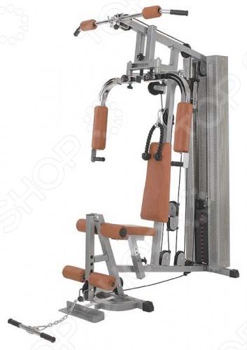 Тренажер силовой Brumer Gym2 IRHGO802
