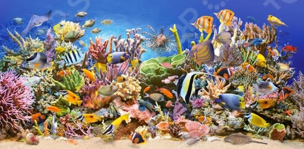 Пазл 4000 элементов Castorland Подводный мир замечательная головоломка, которая понравится и детям, и взрослым. Ведь это так увлекательно собирать красивое изображение из небольших элементов словно художник, составляющий мозаику. На поверхность пазла нанесен четкий рисунок высокого качества, поэтому процесс сборки становится простым и приятным, а результат радует глаз. Кстати, готовое изображение может стать отличным украшением для вашего дома, если его наклеить на какую-нибудь плотную основу и использовать в качестве картины.