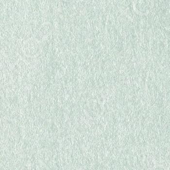 фото Бумага для скрапбукинга металлизированная Bazzill Basics BZ12-12, купить, цена
