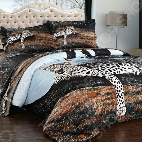 Комплект постельного белья Softline 09619 банный комплект softline 05033