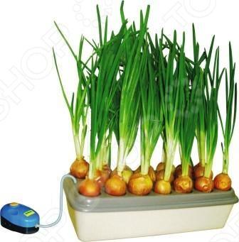 Грядка гидропонная «Луковое счастье»Полезные мелочи<br>Зеленый лук - одна из самых распространенных и ценных для питания зеленых культур. Он является богатым источником многих витаминов, ценных минеральных солей и фитонцидов, защищающих организм от болезнетворных бактерий. С гидропонной грядкой вы сможете выращивать этот незаменимый продукт круглый год прямо на подоконнике, без сколько-нибудь заметных усилий! Домашняя установка для выращивания зеленого лука Луковое счастье - это оригинальный и очень простой способ повысить качество своего питания и оздоровить свой организм. Луковица от природы обладает всеми необходимыми ресурсами для своего развития и роста зеленого пера. Все что требуется это создать требуемые условия для роста: питание корневой системы углекислый газ и вода и свет для фотосинтеза зеленого пера.В запатентованной гидропонной установке Луковое счастье используются идеальные условия для роста. Именно поэтому зелень в ней растет в 2 раза быстрее 14-15 дней , чем в обычных условиях на земляной грядке 27-30 дней и при этом не гниет как при выращивании в горшке или банке. Не менее важным качеством установки Луковое счастье является ее нетребовательность к уходу и обслуживанию, например, полив или добавление воды. Все что от вас требуется - это включаете ее в сеть и радоваться свежей зеленью на своем столе одна гидропонная установка способна производить до 1,5 кг зеленого лука ежемесячно . Как это работает:  В посадочных местах размещается до двадцати луковиц средних размеров по 40-50 грамм каждая.  Емкость снизу наполняется обычной водой таким образом, чтобы до края емкости оставалось 1-2 см свободного пространства.  Таким образом, донце каждой луковицы находится над поверхностью воды и лишь ее корни погружены во влагу. Благодаря этому плод луковицы остается сухим, а процесс гниения исключен.  Вас не будут тревожить какие-либо запахи или мошки, чего нельзя сказать о выращивание зеленого лука традиционным методов в банке с землей. В установке Луковое счас