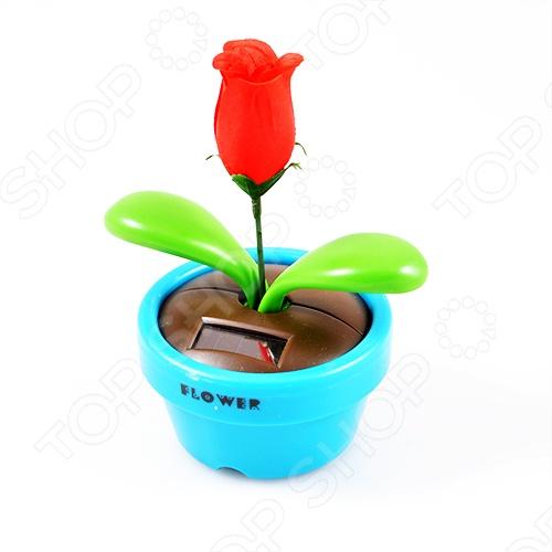 Игрушка-релаксатор «Солнечная роза». В ассортименте