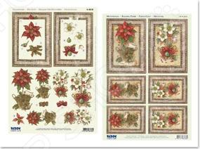 фото Аппликация вырубная и фон для рисунков Reddy Creative Cards «Пуансеттия, рождественская роза», купить, цена