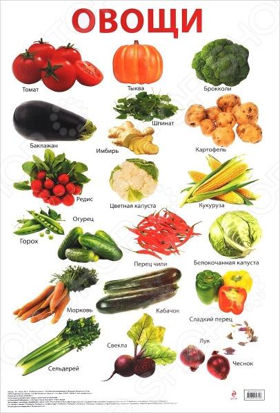 ОвощиНаглядно-методические пособия<br>Учебный плакат для детей наглядно расскажет малышу об овощах.<br>