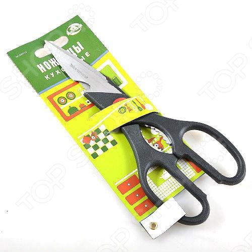 Ножницы кухонные Мультидом AN60-28