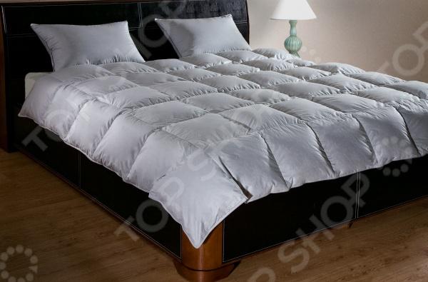 Одеяло Primavelle Argelia одеяло двуспальное primavelle rosalia