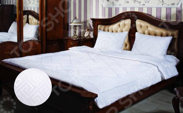 Одеяло Primavelle AfinaОдеяла<br>Одеяло Primavelle Afina представляет собой воплощение человечества об удобном и комфортном сне. Внутри подушки находится искусственный лебяжий пух, который представляет собой сверхтонкое волокно нового поколения, что позволяет мягкой и воздушной постели не накапливать пыль и запахи. Главное преимущество наполнителя гипоаллергенность, поэтому одеяло отлично подходит как взрослым, так и детям. Чехол одеяла создан из ткани Биософт с тиснением и peach-эффектом, представляющим собой процесс дополнительной обработки, после которой ткань приобретает бархатистую на ощупь фактуру. Изделие неприхотливо в уходе, хорошо переносит стирку и быстро сохнет.<br>
