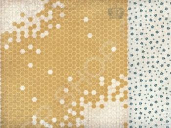 фото Бумага для скрапбукинга двусторонняя Kaisercraft Honeycomb, купить, цена