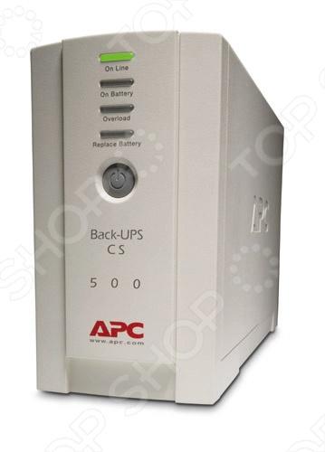 Источник бесперебойного питания APC BK500EI