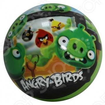 Мяч детский 1 TOY Классика - Птицы прорыв Мяч детский 1 Toy Т56128 Классика - Птицы прорыв /23