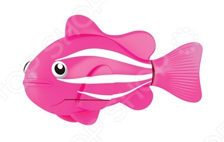 Роборыбка RoboFish Клоун 2501-2 станет замечательным подарком и с радостью поселится в вашем аквариуме. Данная модель относится к инновационным высокотехнологичным игрушкам. Активируется игрушка в воде, имитирует движения и повадки рыбы. Электромагнитный мотор позволяет рыбке двигаться в 5 направлениях. При погружении в аквариум или другую емкость с водой, РобоРыбка начинает плавать, опускаясь ко дну и поднимаясь к поверхности воды. Игрушка работает от двух алкалиновых батареек А76 или RL44, которые входят в комплект две установлены в игрушку и 2 запасные . С этой рыбкой Клоуном можно купаться или просто играть с ней в маленьком аквариуме.