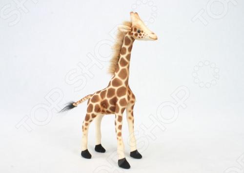 Мягкая игрушка Hansa «Жираф»Мягкие игрушки<br>Игрушка мягкая Hansa Жираф - весьма грамотное сочетание веселья и задора, развлечения и развития, созданное специально для вашего маленького любителя животных! Основными преимуществами данной модели стали: максимально точно копирует оригинал, шьется и набивается вручную, что позволяет достигнуть максимальной реалистичности образа, материал изготовления, тип конструкции - проволочный каркас, возрастная категория. Порадуйте себя и свое драгоценное чадо столь интересным, занимательным и увлекательным дополнением его игрушечной коллекции, как игрушка мягкая Hansa Жираф , при помощи которой можно создавать различные интерьерные образы в детских, студиях и живых уголках !<br>