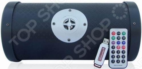 фото Автономный MP3-плеер с сабвуфером SSMP064, Портативная акустика