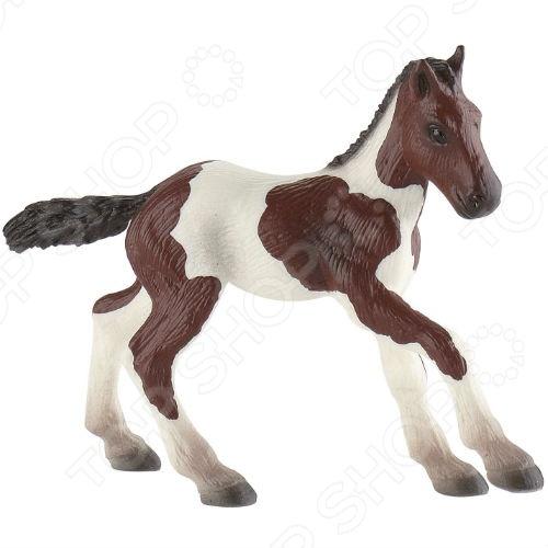 Фигурка-игрушка Bullyland Жеребенок породы пейнт бычки казахской белоголовой породы