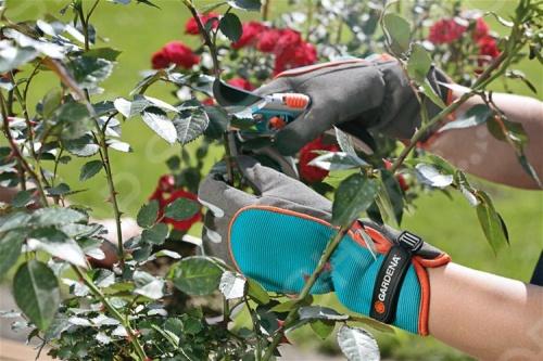 Перчатки для ухода за кустарниками Gardena