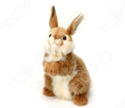 Zakazat.ru: Мягкая игрушка Hansa «Кролик»