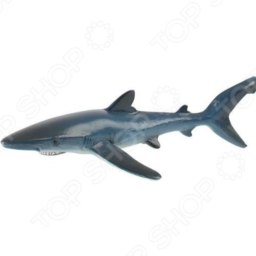 Фигурка-игрушка Bullyland Голубая акулаИгрушечные животные<br>Фигурка-игрушка Bullyland Голубая акула отличный подарок не только для детей, но и взрослых. Качество исполнения и внимание к деталям делают это изделие замечательным как для игровых, так и коллекционных целей. Серия фигурок от Bullyland представлена многочисленными видами домашних и диких животных. Они выполнены в соответствии с производственными стандартами из нетоксичных материалов, поэтому безопасны для здоровья.<br>