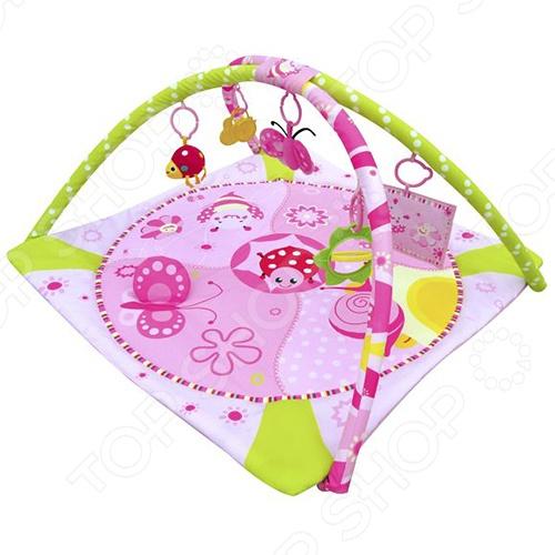 Коврик развивающий Жирафики Божья коровка - предназначен для малышей с первых дней жизни и до 12 месяцев. Коврик стимулирует комплексное развитие малыша - слух, зрение, сенсорику, мелкую и крупную моторику, а так же влияет на эмоциональное развитие ребёнка. Все игрушки, которые подвешены на дуги можно снимать и использовать самостоятельно. Когда малыш подрастёт, он начнёт изучать животных изображённых на коврике. При изготовлении всех элементов коврика используются только высококачественные материалы, абсолютно безопасные для ребёнка. Коврик легко складывается и в собранном виде занимает мало места, поэтому его можно брать с собой на отдых или в путешествия.