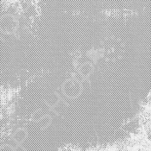 фото Бумага для скрапбукинга Bazzill Basics «Мелкие точки», купить, цена