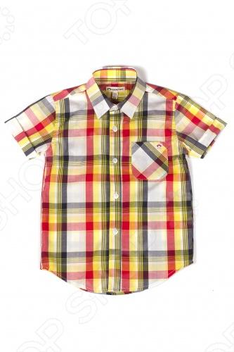 Рубашка детская Appaman Tilden Shirt. Цвет: мультиколорВодолазки. Рубашки<br>Рубашка детская Appaman Tilden Shirt станет отличной деталью гардероба для маленького джентльмена. Это рубашка в классическом стиле с оттенком изысканного ретро: у нее свободный покрой, отложной воротничок, застежка на пуговицах и кармашек на груди. Короткие рукава не ограничивают свободу движения. Достойный выбор для будущего мужчины! Состав: 100 хлопок. Американский бренд Appaman основан в 2003 году дизайнером Харальдом Хузуме. Он создает уникальные наряды в стиле AMERIPOP. Хузум находит вдохновение на улицах Бруклина, работая над многообразной палитрой ярких одежд. Воплощая свои творческие проекты, дизайнер не забывает об удобстве и качестве детских вещей. Вы считаете, что наряд Вашего ребенка должен быть не только удобным, но также стильным и индивидуальным Тогда бренд Appaman для Вас!<br>