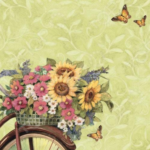 фото Бумага для скрапбукинга K&Company «Цветы на велосипеде», купить, цена