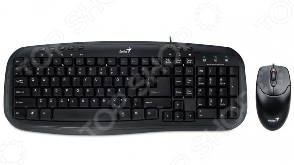 фото Клавиатура с мышью Genius KB-M200/NetScroll 120 USB Black, Комплекты: клавиатуры и мыши