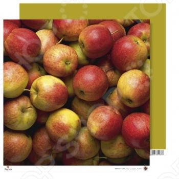 фото Бумага для скрапбукинга Rayher «Яблоки», купить, цена