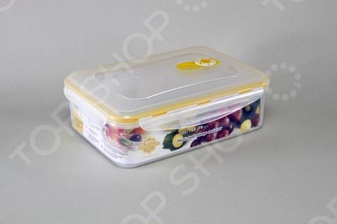 Контейнер вакуумный Stahlberg для продуктов увеличит срок хранения продуктов в холодильнике в 6-7 раз, сохранит свежесть и первозданный вкус блюд. Прост в обращении.