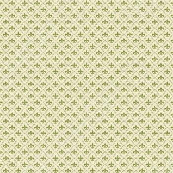фото Бумага для скрапбукинга двусторонняя Teresa Collins Green Fleur De Lis, купить, цена