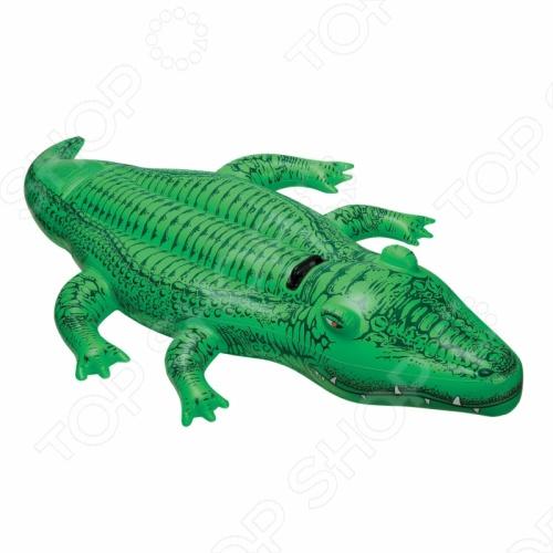 Крокодил надувной Intex 58546 intex игровой центр intex динозавр с горкой и распылителем 241х191х109см от 3х лет упак 2 aq 8 igwt