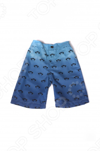 Шорты для мальчиков Шорты детские для мальчика Appaman Logo Swim Trunks. Цвет: синий