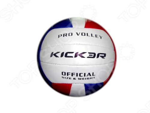Мяч волейбольный Larsen Kicker Vega мяч футбольный larsen kicker run размер 5