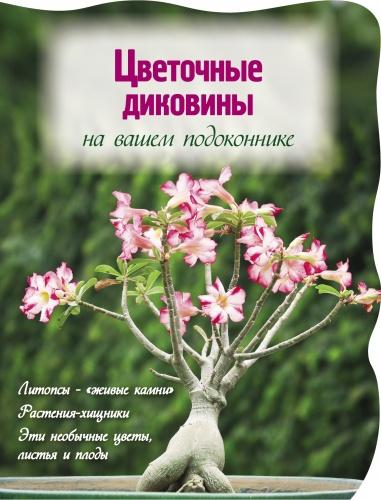 Эта книга посвящена самым необычным обитателям подоконников - растения-камни, цветы-хищники, обладатели удивительных форм и цветов никого не оставят равнодушными! Если вы мечтали иметь какое-то из этих растений у себя дома, теперь это легко и просто сделать - прочитав книгу, вы научитесь ухаживать за ними так, чтобы каждый экземпляр предстал во всем великолепии. Полюбите эти неповторимые растения, и они займут достойное место в вашей домашней коллекции!